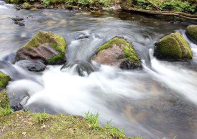 Golitha Falls water flowing through mossy rocks photo for the Richard W Luscombe Photography Portfolio